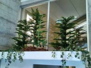 allestimenti-fiori-piante-artificiali palestra-3