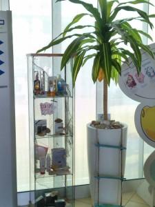 allestimenti-fiori-piante-artificiali palestra-4