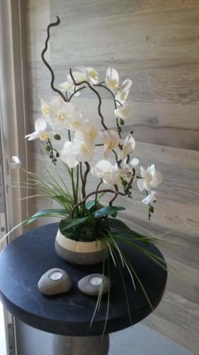 allestimenti-fiori-piante-artificiali palestra-6