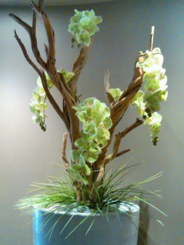 allestimenti-fiori-piante-artificiali palestra-7