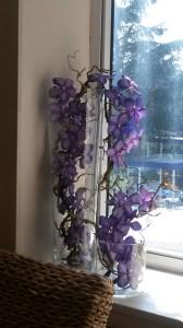 allestimenti-fiori-piante-artificiali spa-centro-benessere-4