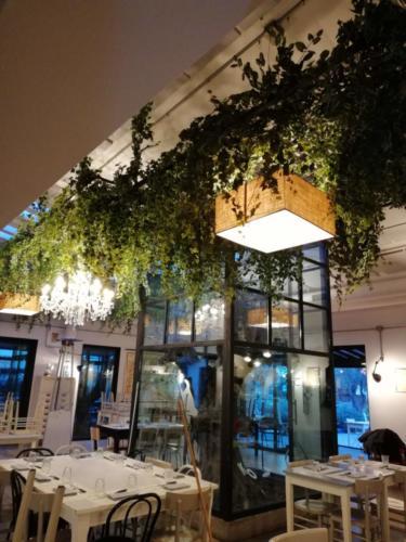 allestimenti-fiori-piante-cadenti-soffitto-artificiali-ristorante-5