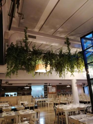 allestimenti-fiori-piante-cadenti-soffitto-artificiali-ristorante-6